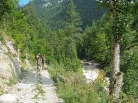Wanderung auf die Herrenalm - Dürrenstein