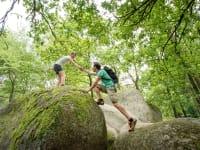 Artner Naturpension - Wandern © Waldviertel Tourismus