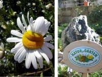 Artner Naturpension - Natur im Garten