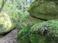 Mystisch, die Steine in der Grashöhle