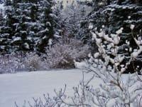 Haus Haider - Garten im Winter