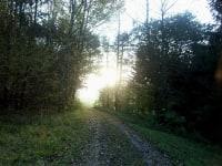 Frische Luft, sensationelle Ausblicke und gemütliche Wanderwege bieten Ihnen Erholung und Entspannung pur.