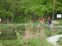 Libellenteich im Wald- Ruheplatz  am Wanderweg