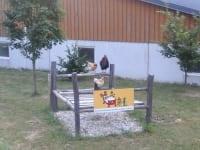 Ferkel- oder Hühnerhof? :-)