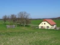 Gästehaus zur alten Buche - Naschgarten