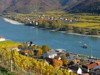 Blick vom Tausendeimerberg auf die Donau und die Rollfähre