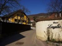 Unser Gästehaus befindet sich direkt neben dem Weingut Lagler.