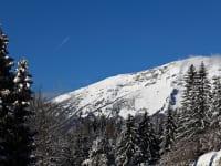 Blick auf Ötscher im Winter vom Hauseingang aus