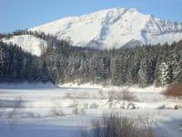 Pension Klug  Blick auf schneebedeckter Stausee vom Ötscher