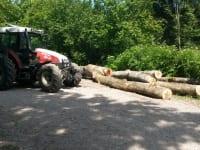 Bei der Holzarbeit