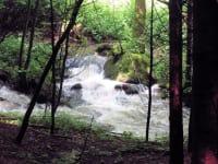Steinbachklamm