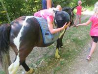 Kann man auf einem Pferd auch liegen?