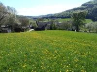 Frühlingswiese mit Bauernhof Waira