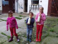 Kinder holen die frische Milch für das Frühstück