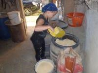 Anna holt Maisschrot für unser Kühe