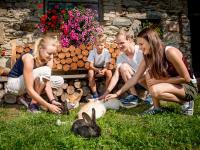 Prannleithen - Streicheleinheiten für die Hasen