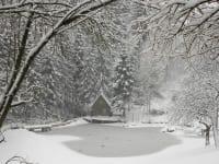 Prannleithen - Winter am Teich