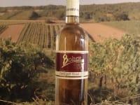 Rosè im Weingarten