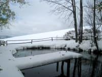 Fischteich im Winter