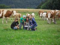 Gruppenfoto auf der Weide