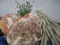 Brot vom Wachahof