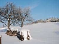 Holzstoß im Winter