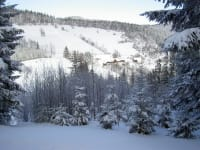 Winterlandschafr