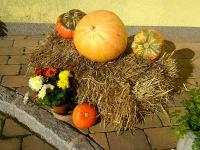 Ötscherblick Familie Winter - Herbst (© Winter Angelika)