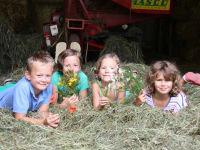 Zwergerlhof - Die Kinder warten schon auf die Geschichte im Heu