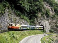 Zwergerlhof - Durch unser Dirndltal faehrt die Maziazellerbahn- Ein Schmalspurjuwel