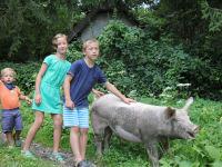 Zwergerlhof - Wieder mal ein lustiger Ausflug mit dem Schweinderl