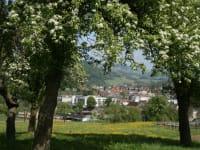 Karhof - Genießen Sie den Ausblick auf Rabenstein