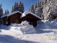 Waldhaus Winter