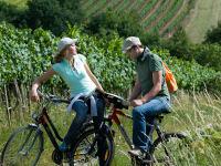 Radfahrendes Paar in den Weinbergen