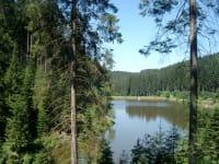 Nähe Dürnbergteich