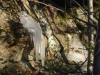 Winterzeit - Eiszapfen