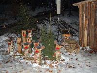der Elchenwald