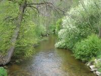 Grenzfluss Maltsch