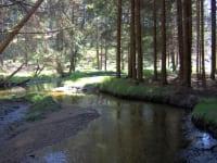 Natura 2000 Europaschutzgebiet Maltsch
