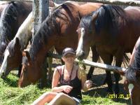 Unsere Stuten bei der Fütterung mit Tochter  Priska