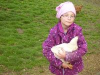 unsere Hühner lassen sich auch streicheln
