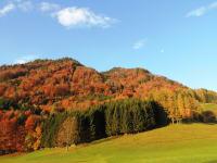 Zwillingskogel im Herbst