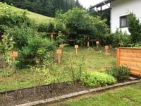 Baum- und Naschgarten