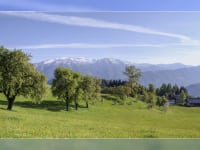 Maimorgen am Schweizersberg