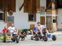 Go-Kart-Rennen mit Ziege Jenny
