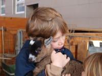 Kuscheln mit Ziege Jenny