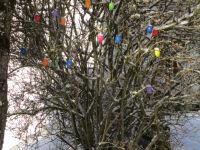 Osterstrauch im Schnee