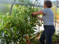 Oma Ilse im Garten