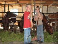 Kinder im Stall beim Kühemelken