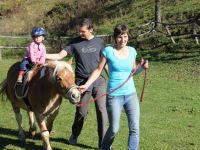 Pferde reiten im  Sommer